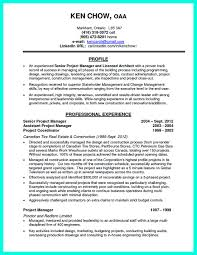 project manager resume professional profile cv profile examples project manager ditch the objective statement example resume and cover letter ipnodns ru
