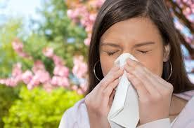 Resultado de imagen de estornudo