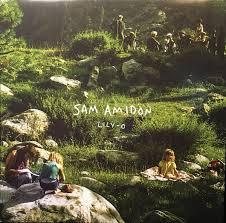 <b>Sam Amidon</b> - <b>Lily-O</b> (2014, Vinyl) | Discogs