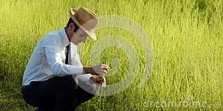 business and nature concepts stock photo image 71198442 business life concepts