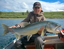trophy lodge to  the guys didn t catch anything over 20 on the flats and although art and gary caught 22 fish rodney and kevin only caught 1