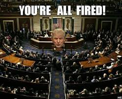 Image result for trump youre fired pics