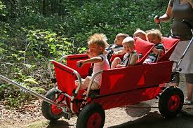 Bildergebnis für transportwagen für kinder