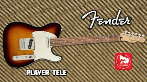 <b>Электрогитара FENDER PLAYER</b> TELECASTER - YouTube