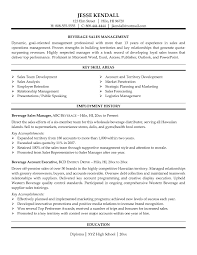 sample resume for outside s professional