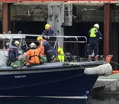 Injured docks worker <b>rushed</b> to hospital after tug boat incident ...
