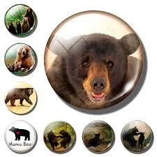 Bear fridge magnet decor <b>Cute Bear Family</b> glass <b>animal</b> 30MM ...
