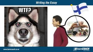 Admission essay editing service nz Extended school day for Admission Essay Editing     Imhoff Custom Services