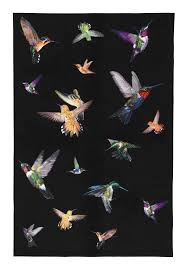 butterfly moments rug ho