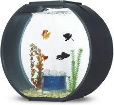 <b>Аквариум AA-Aquariums Deco</b> O Max черный 54 л - купить в ...