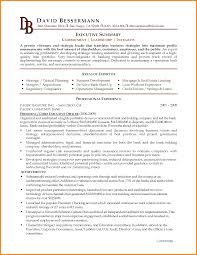 7 example of resume summary resume reference example of resume summary executive director resume summary executive summary resume example png