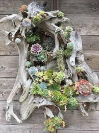 Love this succulent sculpture | <b>Patio</b> | Succulents garden, Garden ...