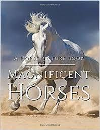 Horse Picture Book - Magnificent Horses: Amazing ... - Amazon.com