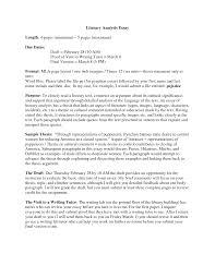 essay essay format literature sample of critical analysis essay essay critical review sample essay essay critical analysis critical