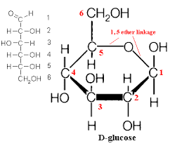 what is the convention of numbering carbon atoms in organic    glucose open and cyclic