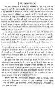 sample essay on the raksha bandhan in hindi
