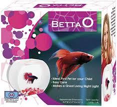 AA Betta O Girl Aquariums : Pet Supplies - Amazon.com