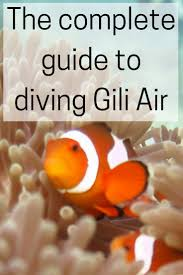 cheskie s gap life the complete guide to diving gili air do you have any questions about diving the gili islands that i ve not answered let me know in the comments and i ll do my best to answer them