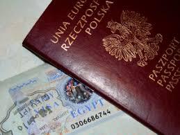 Risultati immagini per wiza