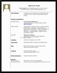 college resume no job experience resume for students no experience