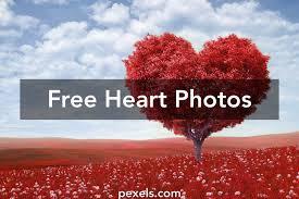 150+ Romantic <b>Heart</b> Pictures · Pexels · Free Stock Photos