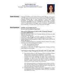 professional summary resume examples getessay biz job resume summary examplesregularmidwesterners resume and templates for professional summary resume