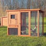 Images & Illustrations of chicken coop