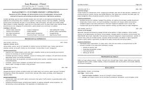 area example of a good customer service resume customer service  resume customer resume resume