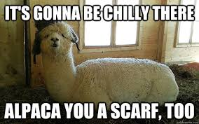 It's gonna be chilly there Alpaca you a scarf, too - Weather ... via Relatably.com