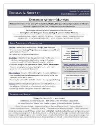 Best Executive Resume Writer   Award Winning Sales Sample Resume