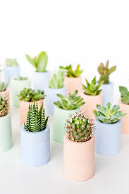 How to <b>Color</b> Plaster with This Secret Ingredient + <b>DIY</b> Planters ...