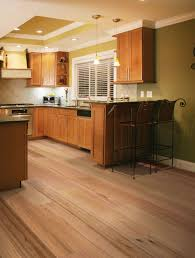 Kitchen Flooring Options Pros And Cons Kitchen Flooring Options Illinois Criminaldefensecom