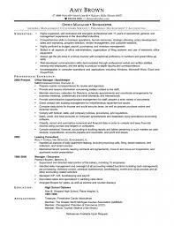 picturesque bookkeeper resume sample ainv professional resumes astounding