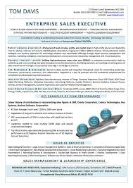 resume examples cv sample resume templates rso resumes 1 enterprise s executive
