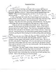 argumentative essays for middle schoolers writing ideas sample essays middle school