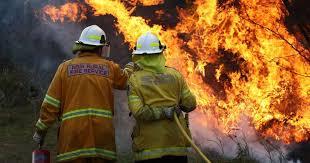 Empregado de limpeza suspeito de atear fogos em Penedono e Sernancelhe