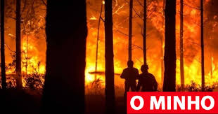 Incêndios: Fogo em Proença-a-Nova combatido por 231 operacionais