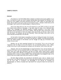 descriptive essay about a person Millicent Rogers Museum essay description of a person  person i admire essay example     Narrative Essay