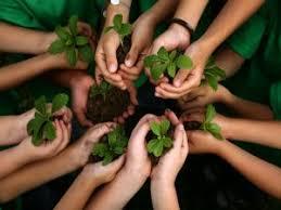 Danilo Medina encabeza acto celebración Día Internacional de los Bosques