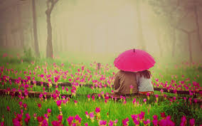 Image result for garden  flowers couple