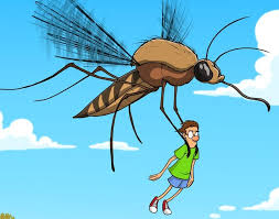 Image result for dro fly cartoon