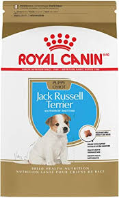 Royal Canin Jack Russell Terrier Puppy Breed ... - Amazon.com