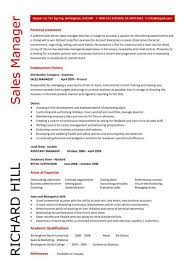 sales manager cv example    cv template   s management jobs    sales manager cv example