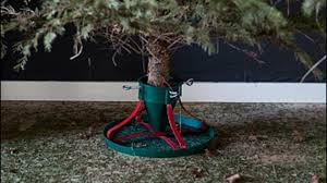 The Why: Making live <b>Christmas trees</b> last longer | kare11.com