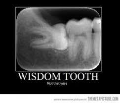 Wisdom Teeth Jokes | Kappit via Relatably.com