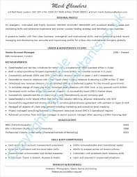 example of a good cv professional help from top writers example cv