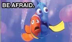 ViralRead » Top 5 Nemo Storm Memes via Relatably.com