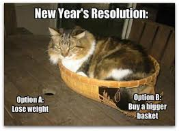 New-Years-Resolution-Memes-Cats.jpg via Relatably.com