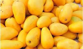 Image result for mango fruit