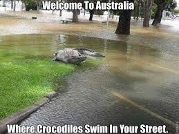 29 Of The Funniest Memes About Australia via Relatably.com